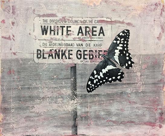 WHITES ONLY 60 x 50CM